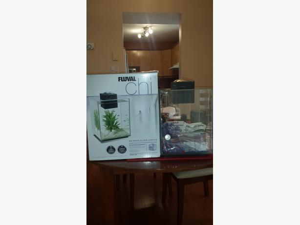 Aquarium Plants Winnipeg
