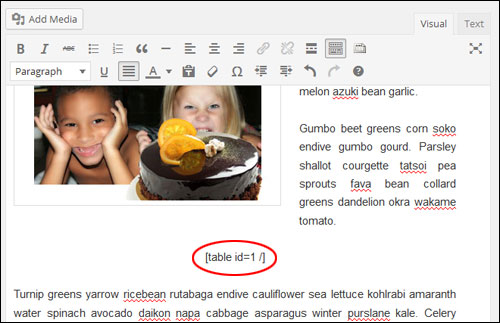 Creating And Adding Tables To WordPress Pages And Posts