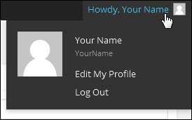Editing Your User Details And Personal Options In WordPress