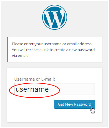 What To Do If You Forget Your WordPress Password
