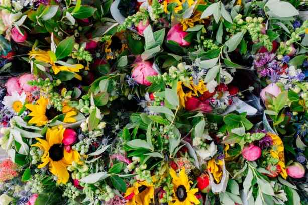 august_september_2018_flower_farm_Katheryn_Moran_Photography_Bellingham_Washington_Triple_wren_farm82