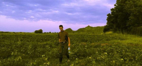 Photo by Scott Nelson of Alexander walking through the fields
