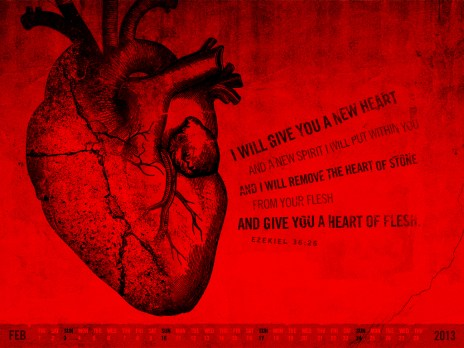 Image result for new heart