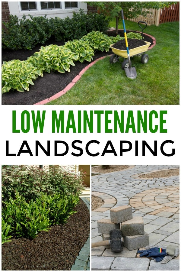 curb appeal - landscaping