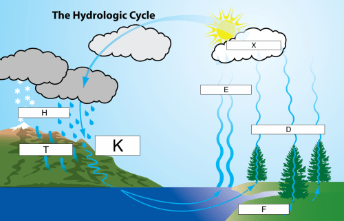 small resolution of acid rain water cycle diagram wiring diagrams wni acid rain water cycle diagram