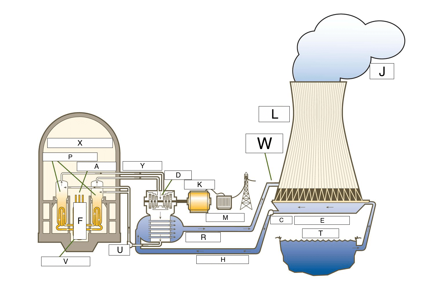 Diagram Nuclear Power Plant Diagram Labeled Full Version