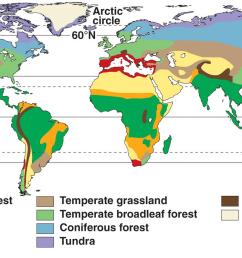 tropical rainforest c tundra d savannah [ 1401 x 799 Pixel ]