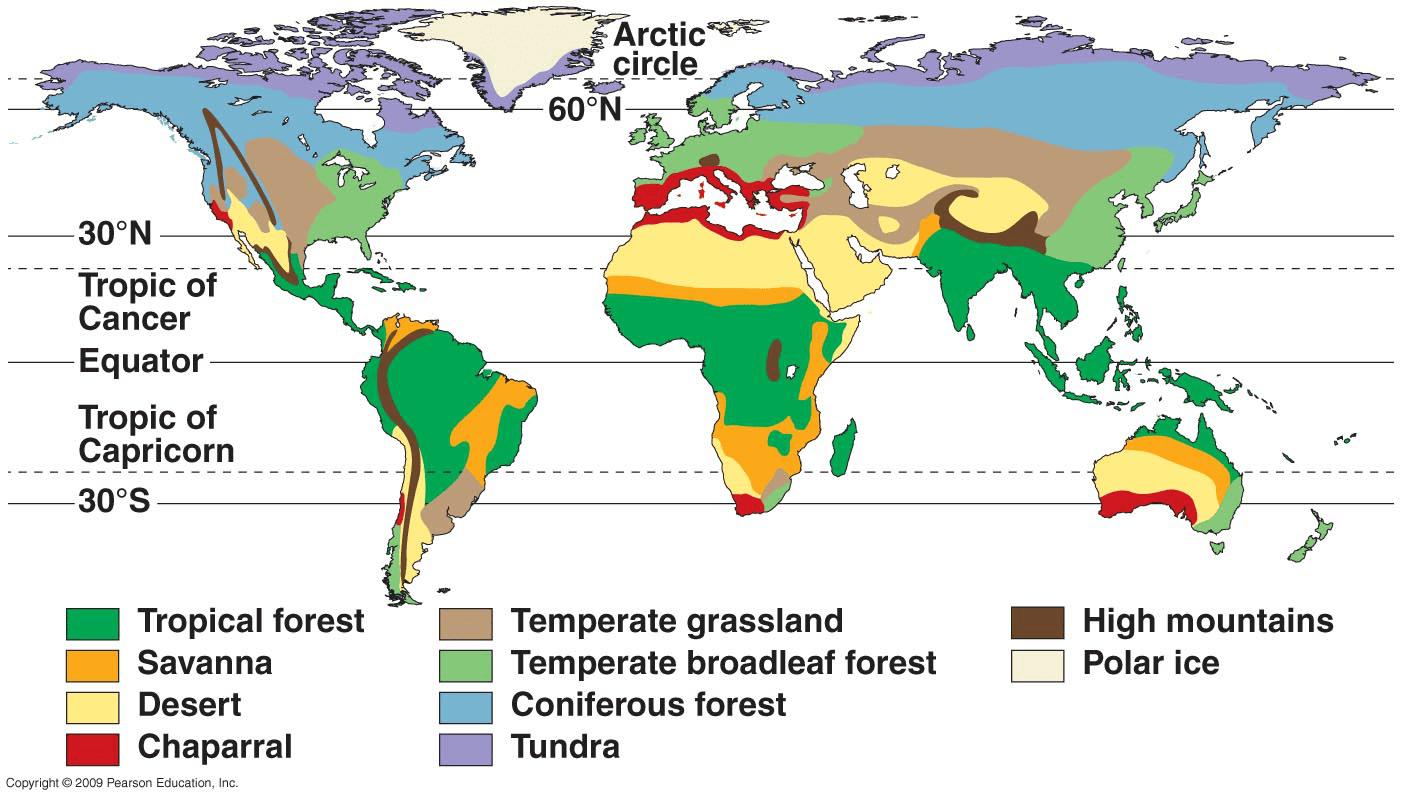 hight resolution of tropical rainforest c tundra d savannah