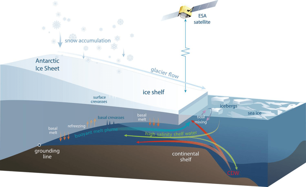medium resolution of a antarctic ice sheet b ice shelf c glacier flow d icebergs