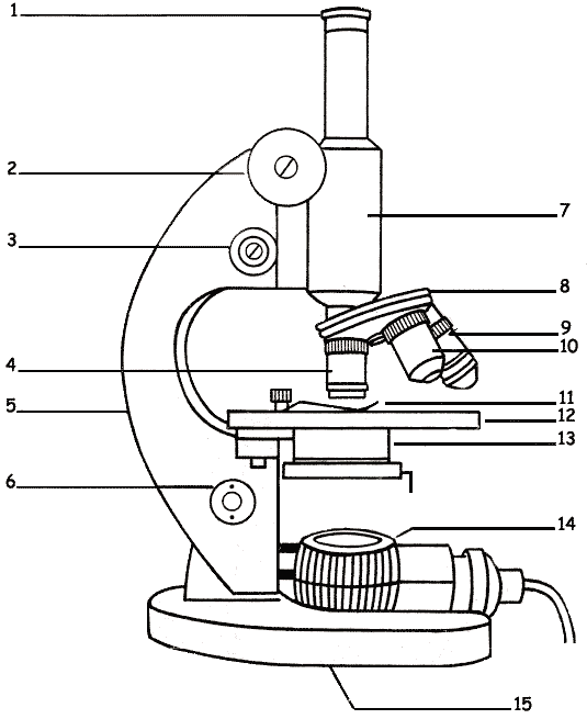 a diagram of microscope parts 2002 nissan sentra gxe radio wiring the lesson 0362 tqa explorer which number is eyepiece