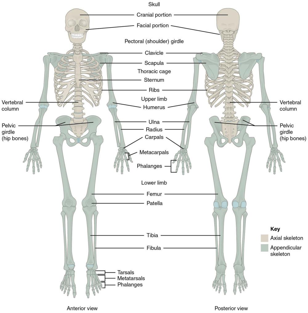 medium resolution of instructional diagrams