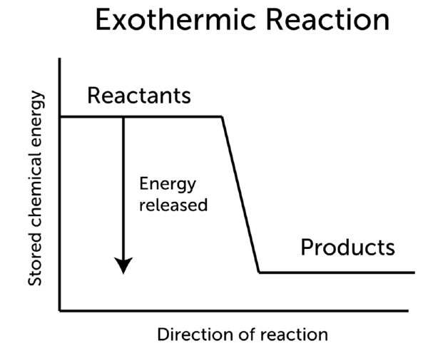 In An Exothermic Reaction Energy Is Transferred From