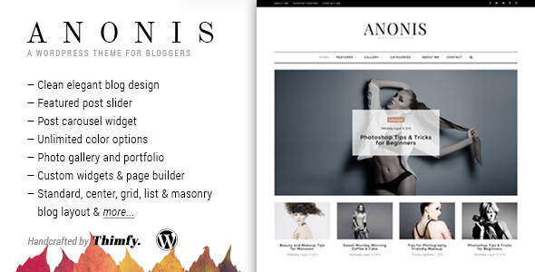 Anonis – A Responsive WordPress Blog Theme