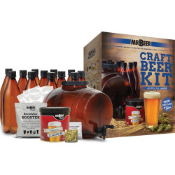 Mr. Beer American Lager Homebrewing Craft Beer Kit, Multicolor