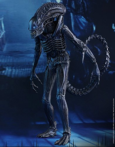 Movie Masterpiece Alien Warrior Sixth Scale Figure by Hot Toys