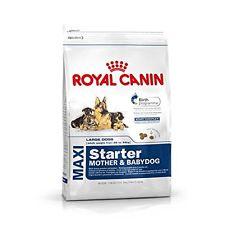 Royal Canin Maxi Starter dog food, 4 kg