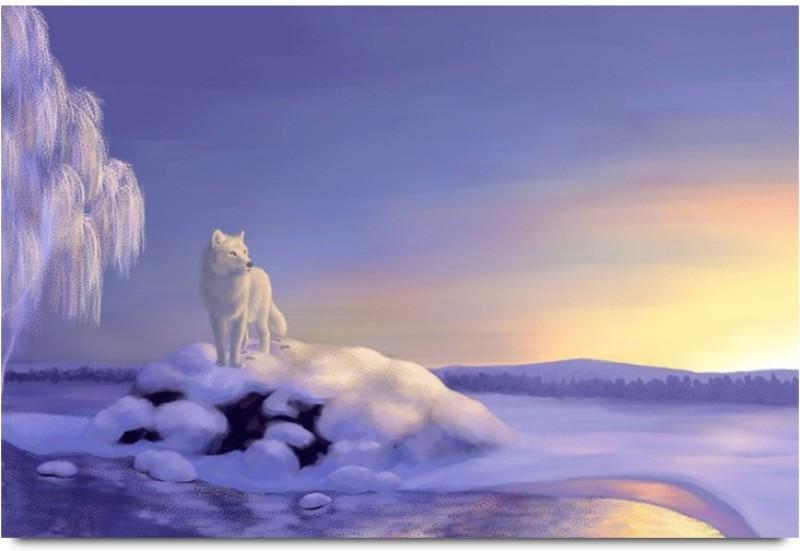 polar bear at island wildlife paper print24 inch x 36 inch rolled -