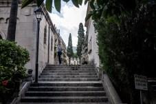 cementerio 11