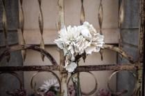 cementerio 31