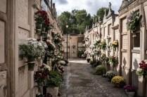 cementerio 62