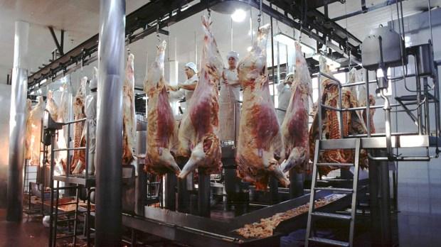 Las compras desde China impulsan las exportaciones de carne argentina (NA)
