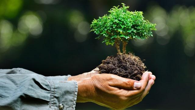 Los expertos apuntan a la necesidad de que los medios destaquen constantemente informaciones relacionadas con el cambio climático para concientizar a la población(iStock)