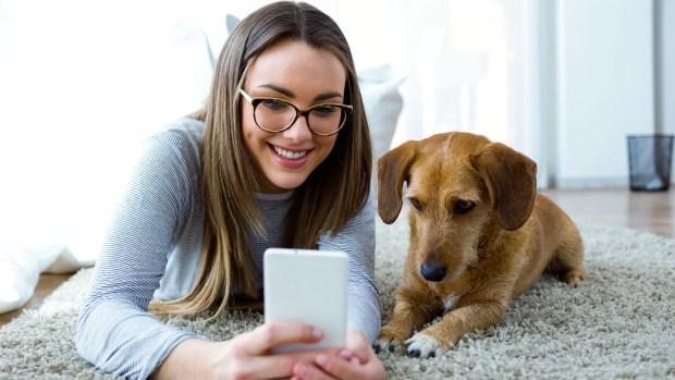 El perro pertenece a una especie social, por eso debe pasar la mayor parte de su tiempo acompañado (iStock)