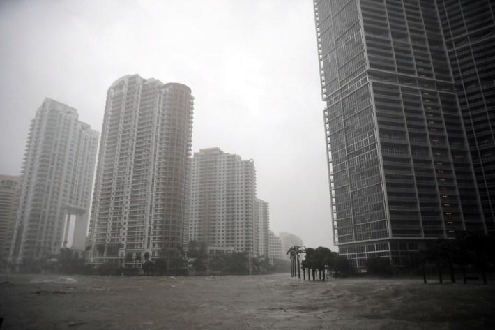 Al sur de Florida,en el centro de Miami (Reuters)