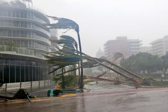 Las palmeras esparcidas por la carretera a medida que pasa el huracán Irma en Miami Beach, Florida (AP)