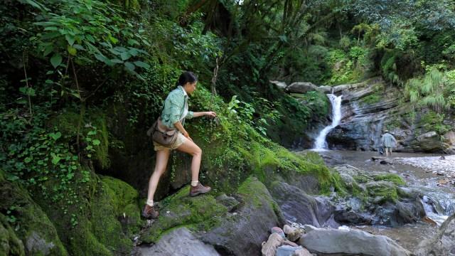 En Tucumán, las Econsendas que, desde la selvática vegetación de las Yungas hasta los pastizales de altura de las cumbres, resguardan sitios arqueológicos y conviven con una cultura ancestral latente
