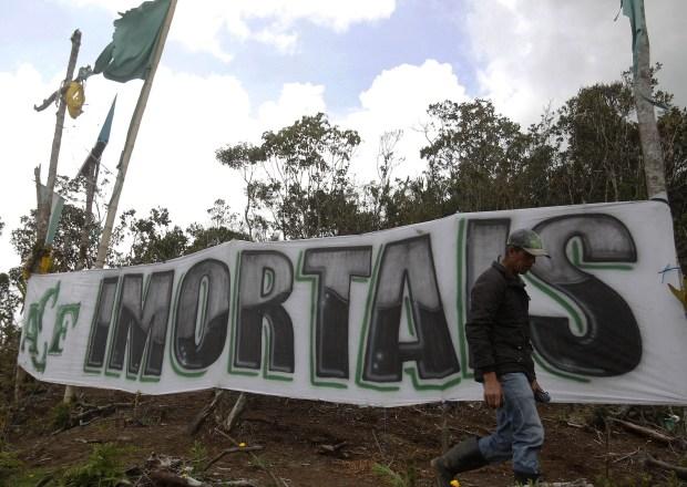 """""""Inmortales"""", reza una de las banderas (EFE)"""