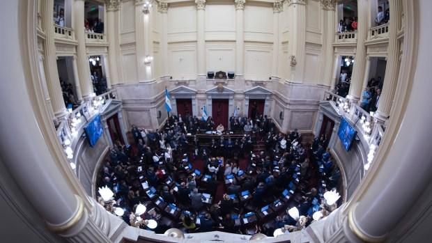 Vista del Senado (Adrian Escandar)