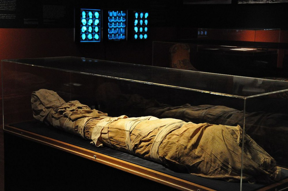Una momia expuesta en una de las salas del Museo Nicholson (Flickr)