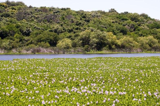 El Corredor Ecoturístico del Litoral es una de las apuestas del Ministerio de Turismo.