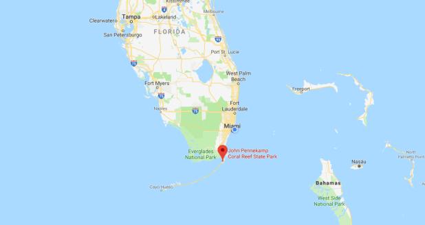 Parque Estatal John Pennekamp, Florida