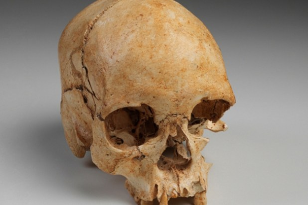El fósil Luzia, el más antiguo de América, parte del acervo (Foto: Archivo Museo Nacional)