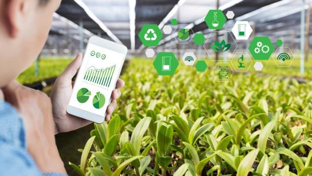 Buscan colaborar en la comunicación entre generadores de tecnología y usuarios