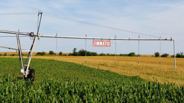 Uno de los campos de arroz de Adecoagro