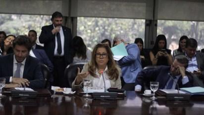 La diputada Graciela Camaño (Matías Baglietto)