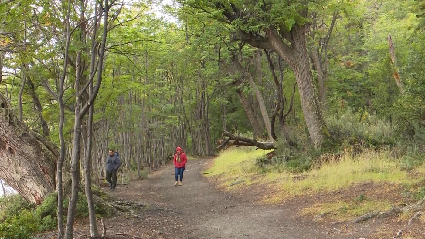 El Parque Nacional de Tierra del Fuego está ubicado en el extremo suroeste de la porción argentina de la isla Grande, a 12 km de Ushuaia