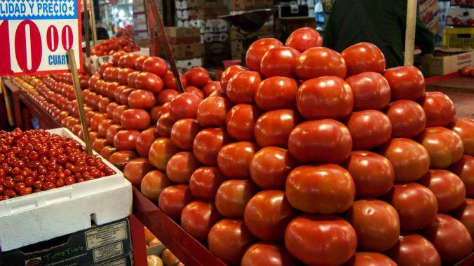 La participación de México en el mercado de tomate en Estados Unidos es mayor que la de los productores locales, señalaron senadores (FOTO: DIEGO SIMÓN SÁNCHEZ /CUARTOSCURO.COM)