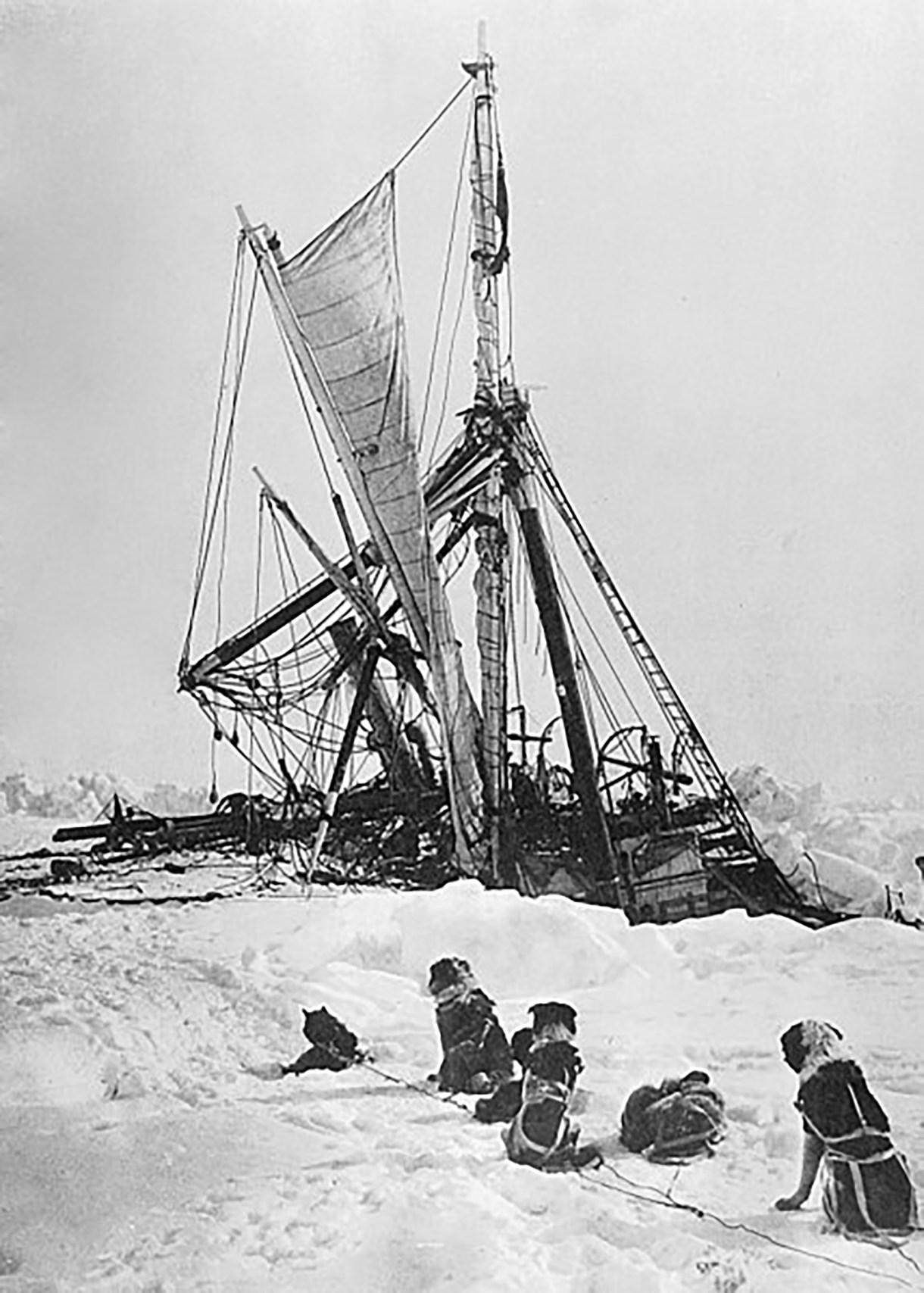 Los tripulantes del Endurance debieron irse en trineo luego de que el barco quedara atrapado