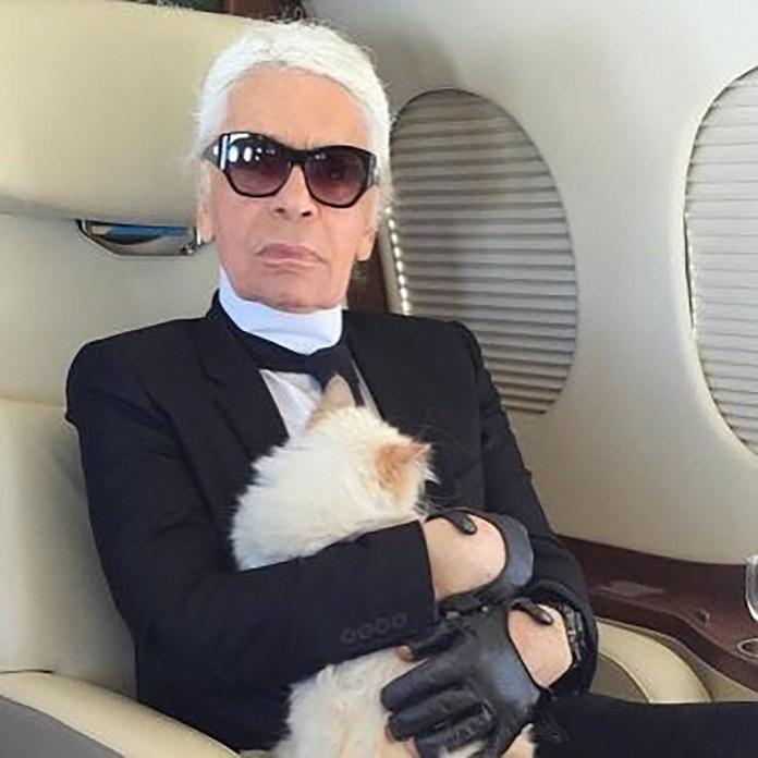 El diseñador y su mascota, en avión