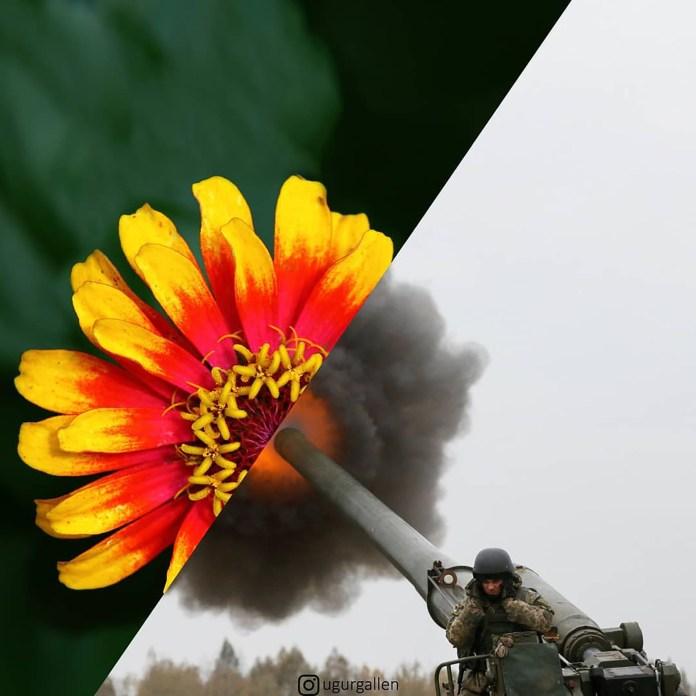 Un tanque en Ucrania y una flor