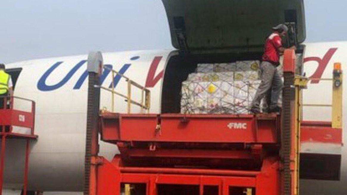 La llegada de la ayuda humanitaria (@HaslerIglesias)