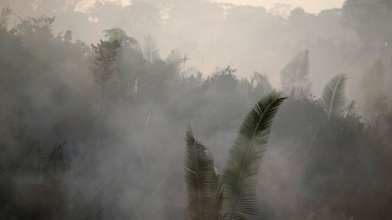 Los incendios encendieron las alarmas en todo el mundo (Reuters)