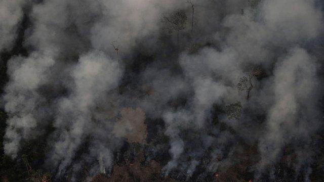 El INPE precisó que entre el 1 de enero y el 18 de agosto ha registrado 71.497 focos de incendio en el país y que un 52,5 % se sitúan en la región amazónica (Reuters)