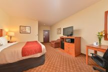 Coupon Comfort Inn & Suites Las Vegas