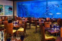 Guy Harvey Tradewinds Resort St. Pete Beach FL