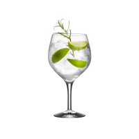 Gin and Tonic Glass (set of 4) - Orrefors US